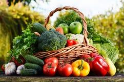 Panier en osier avec les légumes organiques crus assortis dans le jardin Photo stock