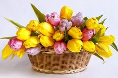 Panier en osier avec un bouquet des tulipes Photos stock