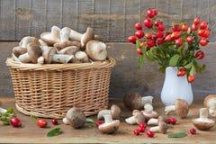 Panier en osier complètement des champignons Photos libres de droits