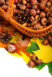 Panier en osier d'automne Image libre de droits