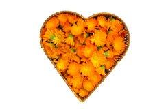 Panier en osier de forme de coeur avec les fleurs médicales de souci de calendula Photographie stock libre de droits