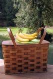 Panier et fruit de pique-nique à l'extérieur photo stock