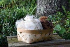 Panier rempli de fibre d'ouatine d'alpaga Image stock