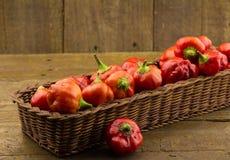Panier rustique des poivrons de piment rouge sur le fond en bois approximatif Photographie stock