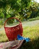 Panier sur l'herbe Images stock