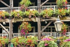 Paniers accrochants fleurissants sur la vieille structure en bois Photos libres de droits