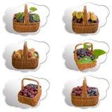 Paniers avec le fruit Photographie stock