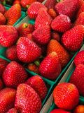 Paniers de fraise Photo stock