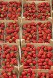 Paniers de fraise Photos libres de droits