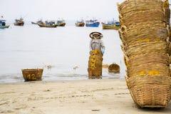 Paniers de lavage de femme pour des anchois utilisés pour la sauce à poissons le 7 février 2012 en Mui Ne, Vietnam Photos libres de droits