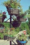 Paniers des fleurs en parc Photo libre de droits