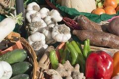 Paniers des fruits et légumes au soleil Photographie stock libre de droits