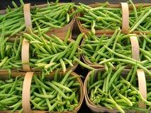 Paniers des haricots verts Image libre de droits