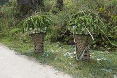 Paniers indigènes de transport Image stock