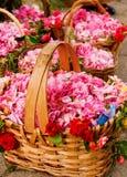 Paniers remplis de roses Image libre de droits