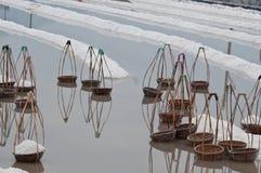 Paniers sur le sel-lac Image stock