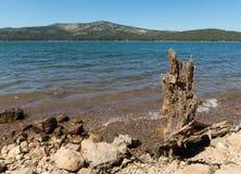 Panika rezerwuar, północny Kalifornia zdjęcie royalty free