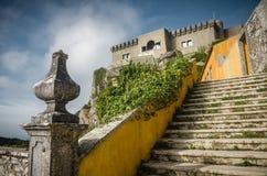Paninha fristad Fotografering för Bildbyråer