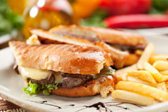 Panini. Italian Sandwich with French Fries and Vegetables Stock Photo