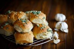 Panini casalinghi fertili con aglio ed aneto Fotografia Stock