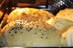 Panini che sono al forno nel forno con i panini delle erbe Fotografia Stock Libera da Diritti