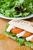 Panini de mozzarella et de tomate Photographie stock