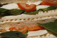 Panini della mozzarella, del pomodoro & degli spinaci Fotografia Stock