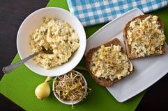 Panini di Homemafe con le uova insalata e germogli Fotografia Stock