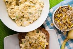 Panini di Homemafe con le uova insalata e germogli Fotografie Stock