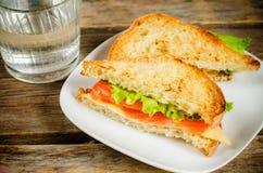 Panini di Panini con il salmone, il formaggio e l'insalata Immagini Stock Libere da Diritti
