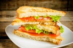 Panini di Panini con il salmone, il formaggio e l'insalata Fotografia Stock Libera da Diritti