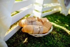 Panini e biscotti sui precedenti dell'erba verde del piatto Fotografia Stock Libera da Diritti