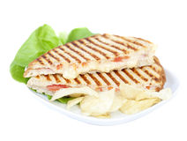 Panini. Fresh toasted panini cheese and ham sandwich with grill marks Royalty Free Stock Images