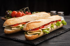 Panini grilled sandwich Royalty Free Stock Photo