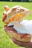 Panini with italian mozzarella and ham. Italian bread's sandwich with sliced mozzarella and italian ham Stock Photography