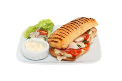 Panini on a plate. Ham, mozzarella, tomato and basil panini on a plate with salad garnish and mayonnaise isolated against white Royalty Free Stock Photo