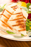 Panini with Salad royalty free stock photos