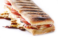 Panini sandwich. Grilled panini sandwich with melted cheese Stock Photos