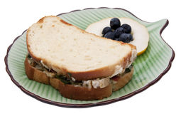 Panini Sandwich Royalty Free Stock Photo