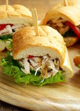 Panini sandwich with chicken and vegetables Royalty Free Stock Photo
