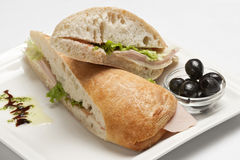 Panini  sandwiches with ham and mozarella. On a white plate Stock Images