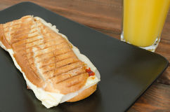 Panini sandwiches italien Royalty Free Stock Photo