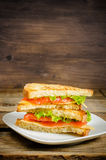 Panini sandwiches with salmon, cheese and salad Stock Image