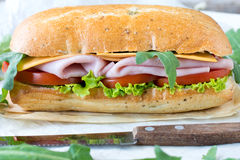 Panini smörgås med skinka royaltyfria bilder