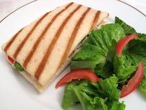 Panini und seitlicher Salat lizenzfreie stockbilder
