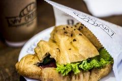 Panino appetitoso con formaggio, le verdure e la carne fotografie stock libere da diritti