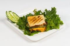 Panino caldo del piatto su fondo bianco Fotografia Stock Libera da Diritti