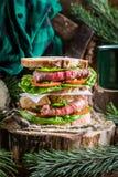 Panino casalingo carnoso con le verdure Fotografia Stock Libera da Diritti