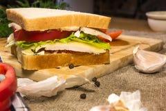 Panino con carne, formaggio e le verdure Fotografia Stock