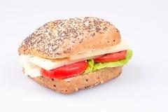 Panino con formaggio ed il pomodoro Fotografia Stock